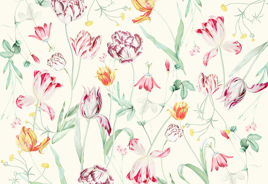 Springtime Tulipina Flowers Wallpaper Wall Mural