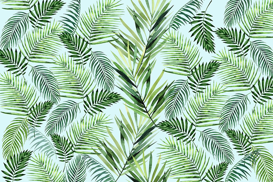 Tropical Ferns Wallpaper
